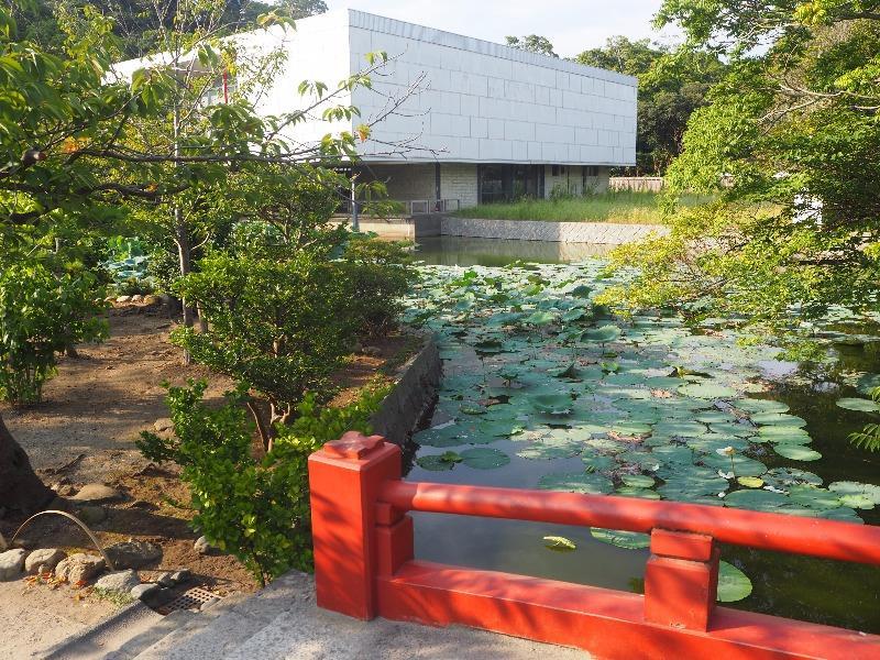 鶴岡八幡宮 源平池 平家池&近代美術館