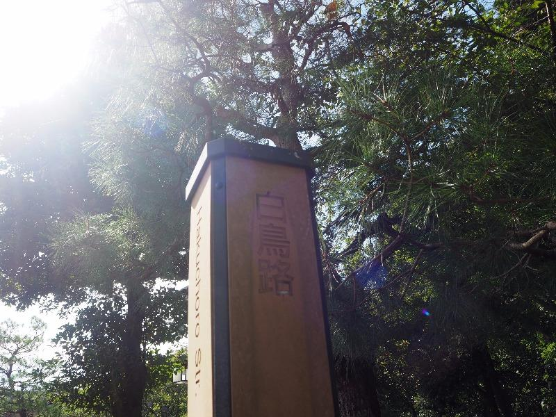 金沢城公園 白鳥路