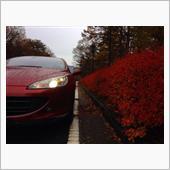 愛車と秋のコラボ写真を投稿してください!
