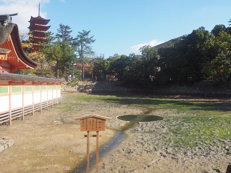 宮島 厳島神社 鏡の池