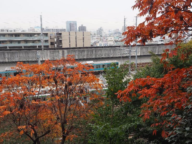 飛鳥山公園 飛鳥山さくら亭 京浜東北線 北行・南行(離合)