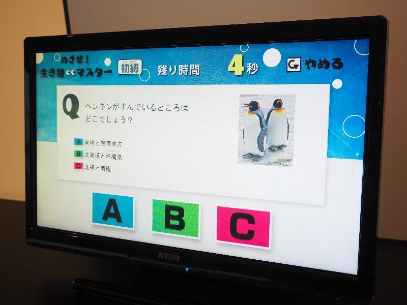 岐阜市科学館 めざせ!生き物マスター Q&Aクイズ ペンギンがすんでいるところはどこでしょう?