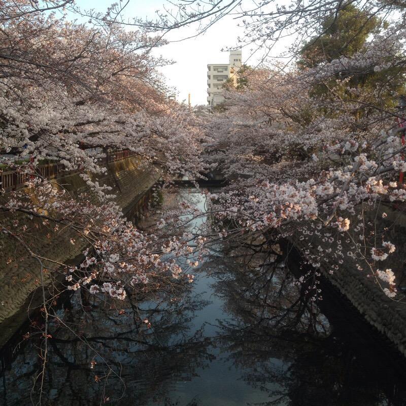 住吉橋から貝殻橋方面