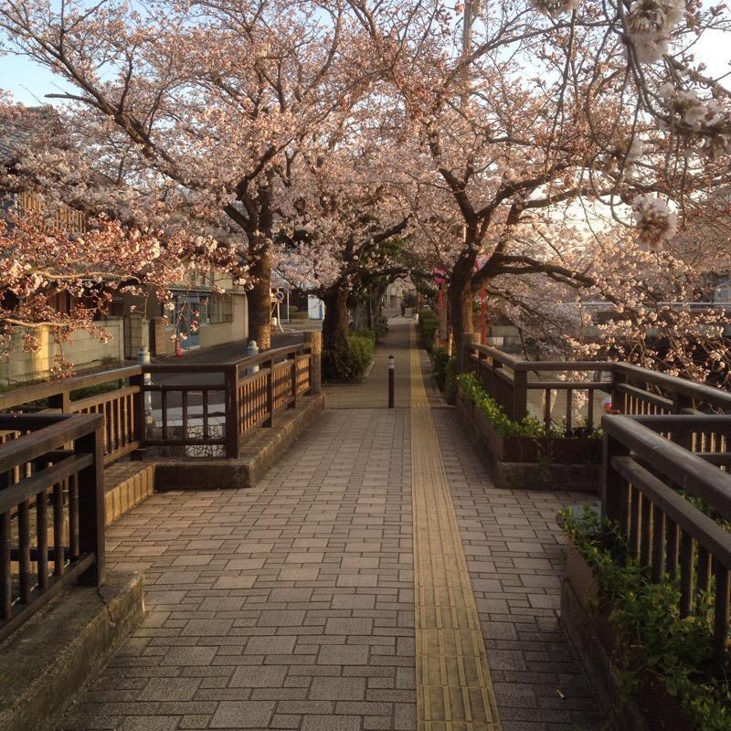 美登鯉橋(2)