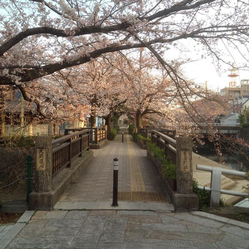 美登鯉橋(1)