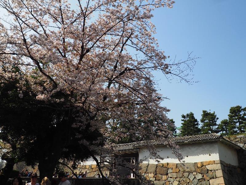 名古屋城 表二之門