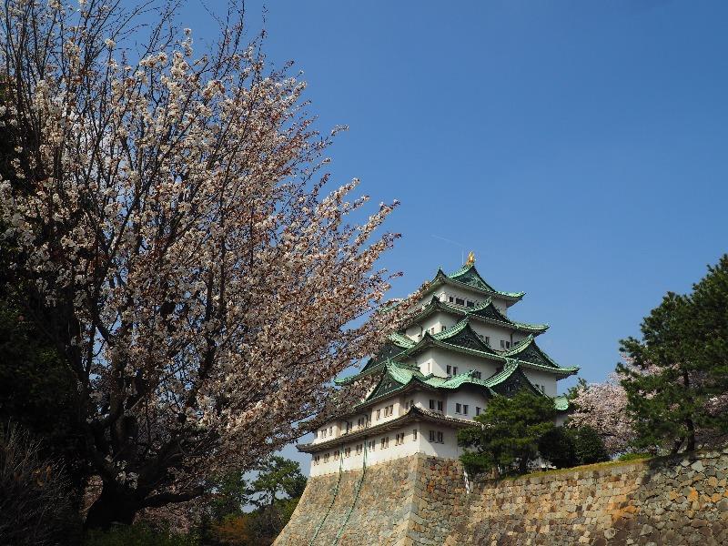 名古屋城 剣塀