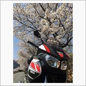"""""""ヤマハ TDM900""""の愛車アルバム"""
