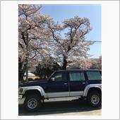 2018年春 桜満開
