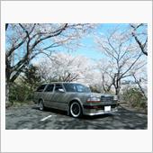 みんカラ投稿企画!愛車と桜! with WUY30 GLORIA