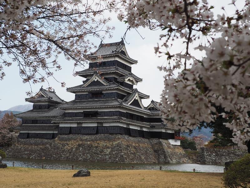 国宝 松本城 松本城公園から天守閣(2)