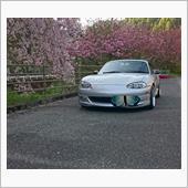 垂れ桜とロド銀