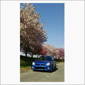 愛車と桜 2018 4 22