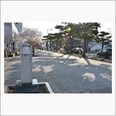 2018年桜【十和田市官庁街通り】の画像
