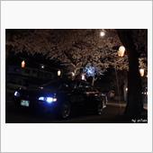 夜桜と90♪の画像