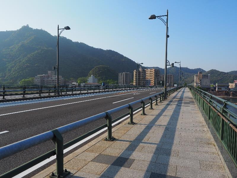 長良橋から岐阜城(左上)(2)