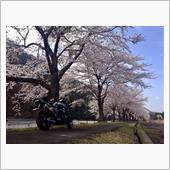 """""""カワサキ ZRX1200 DAEG""""の愛車アルバム"""