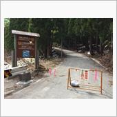 大井沢トンネルから大頭森山への登り