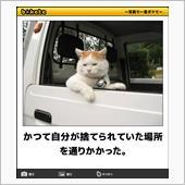 """""""トヨタ セルシオ""""の愛車アルバム"""