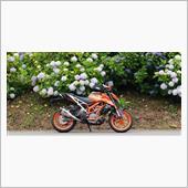 KTM 390DUKEと紫陽花