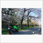 """""""カワサキ ZX-14R""""の愛車アルバム"""
