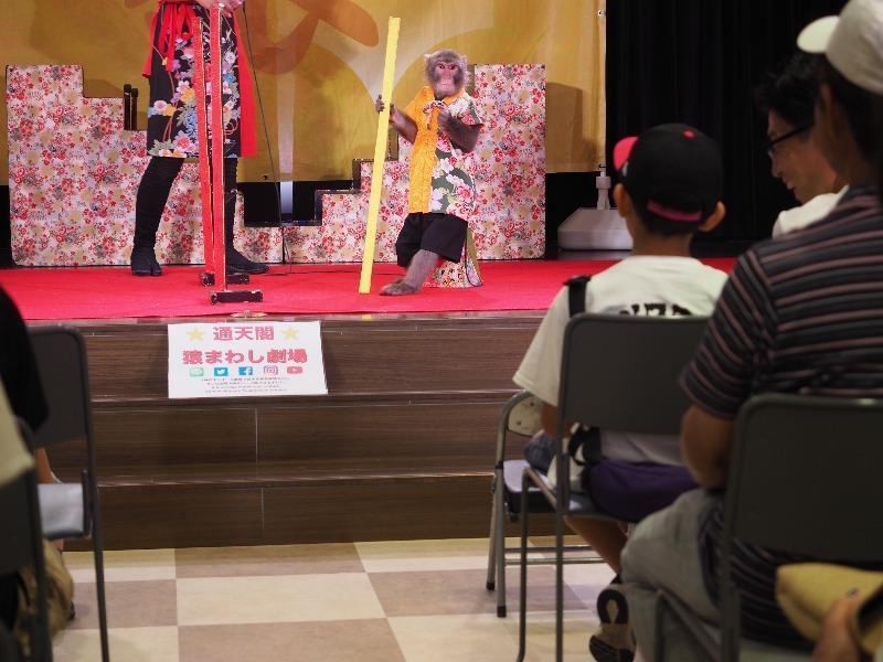 通天閣 猿まわし劇場 ゆうくん(2)