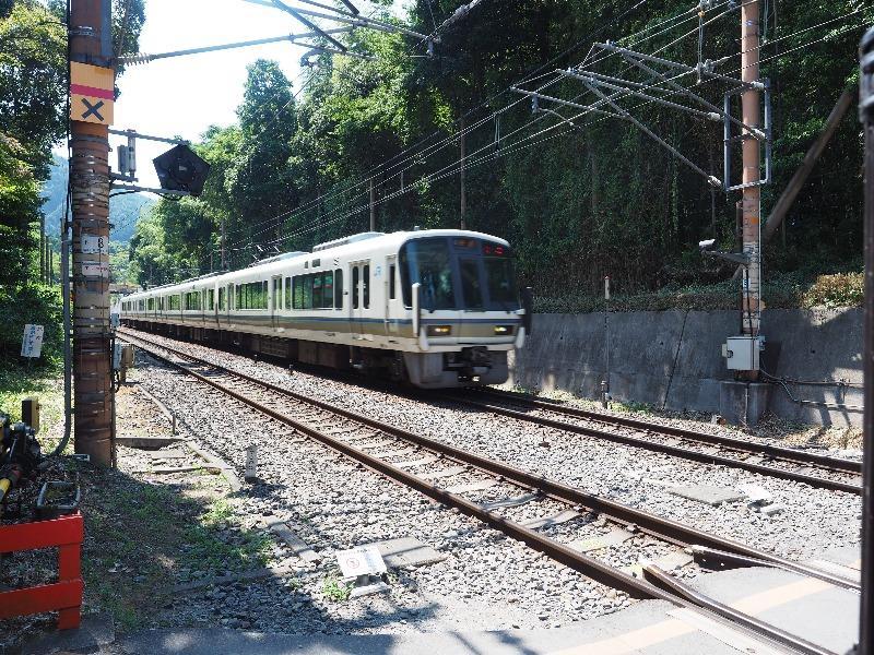 嵐山 竹林の小径(7)JR山陰本線 223系京都方面行き