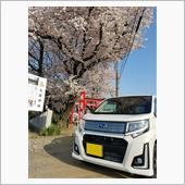 """""""スバル ステラ""""の愛車アルバム"""