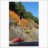 土曜日は、秩父の道の駅とダム巡りの画像