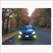 岡山県苫田郡鏡野町の奥津渓、および岡山森林公園の紅葉スポットにて。
