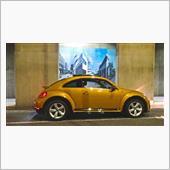 gold beetle R line@minatoku