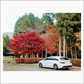 2018/11/11_R427紅葉ドライブ