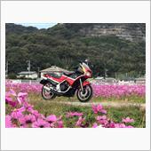 """""""カワサキ KR250S""""の愛車アルバム"""