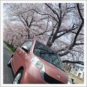 """""""「ちゃんピンク」又は「おピンクちゃん」""""の愛車アルバム"""