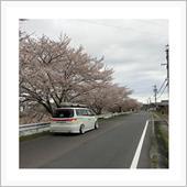 """""""ホンダ エリシオン""""の愛車アルバム"""