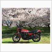 """""""カワサキ Z1100GP""""の愛車アルバム"""