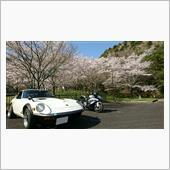 2020 桜。