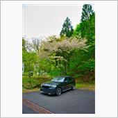 田子町ドライブの画像