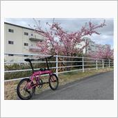 """""""その他 DAHON""""の愛車アルバム"""