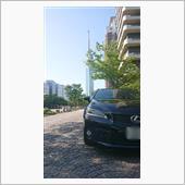 五月晴れのドライブの画像
