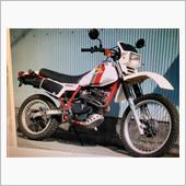 ホンダ XLX250R (MD08)