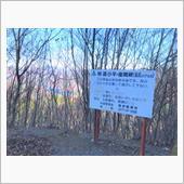 林道 小平・座間線 大間々から草木湖へ林道。熊🐻注意❗️