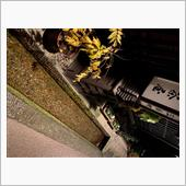 飛騨高山長野の写真撮って出し