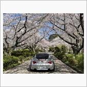 2021年桜と愛車のコラボ🌸