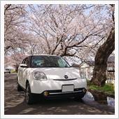 桜ベリーサ