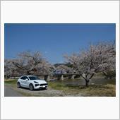 東北ドライブ 4月20日~23日の画像