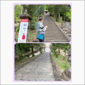 妙義山にお散歩に行くことにしたーpart2の画像