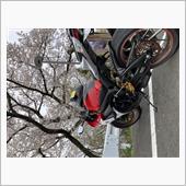 """""""紅白""""の愛車アルバム"""