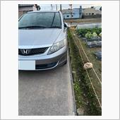 """""""ホンダ エアウェイブ""""の愛車アルバム"""