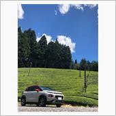 夏空と茶畑と仏車